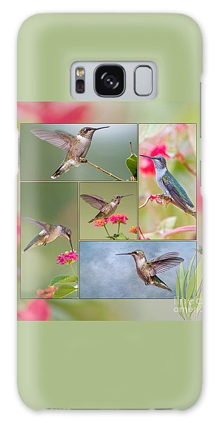 Hummingbird Collage Galaxy Case