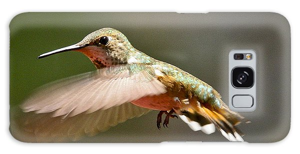 Hummingbird Facing Left Galaxy Case