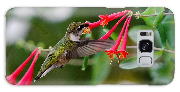 Hummingbird Feeding Galaxy Case