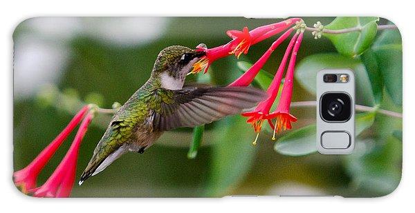 Hummingbird Feeding Galaxy Case by Gary Wightman