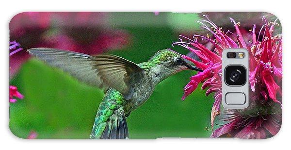 Hummingbird Gathering Nectar Galaxy Case