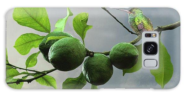 Hummingbird In Lime Tree Galaxy Case