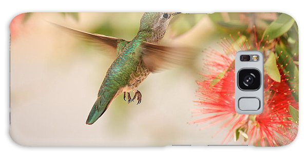 Hummingbird In Paradise Galaxy Case by Penny Meyers