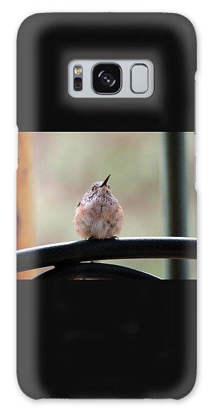 Baby Hummingbird Galaxy Case