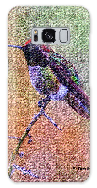 Hummingbird On A Stick Galaxy Case by Tom Janca