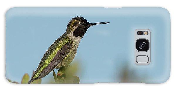 Hummingbird On Watch Galaxy Case