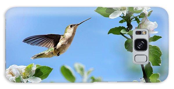 Hummingbird Springtime Galaxy Case