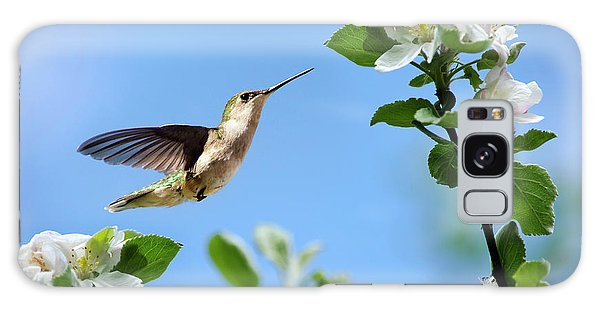 Hummingbird Springtime Galaxy Case by Christina Rollo