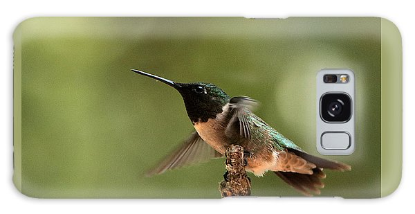 Hummingbird Take-off Galaxy Case by Sheila Brown