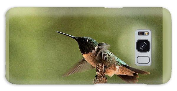 Hummingbird Take-off Galaxy Case