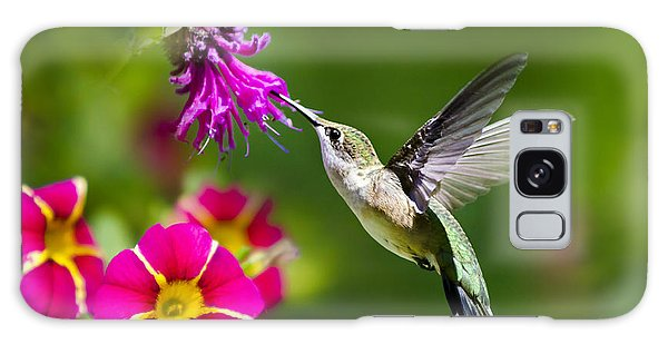 Hummingbird With Flower Galaxy Case by Christina Rollo