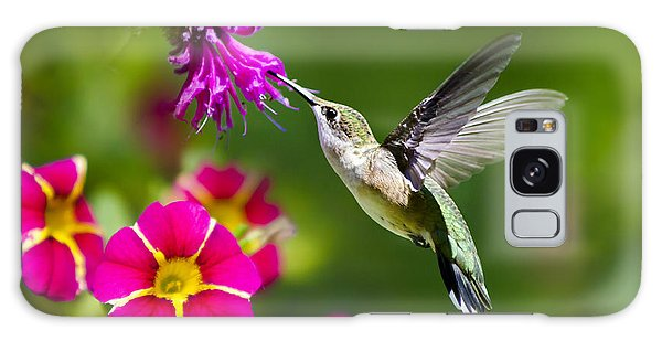 Hummingbird With Flower Galaxy Case