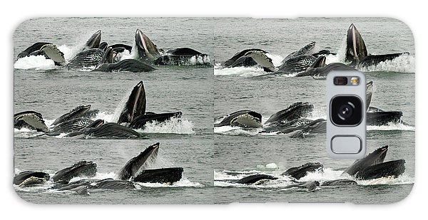 Humpback Whale Bubble-net Feeding Sequence X10 Galaxy Case