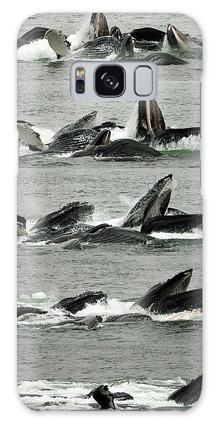Humpback Whale Bubble-net Feeding Sequence X5 V2 Galaxy Case by Robert Shard