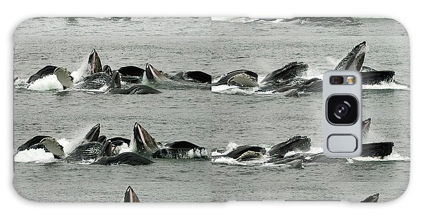 Humpback Whale Bubble-net Feeding Sequence X8 Galaxy Case by Robert Shard