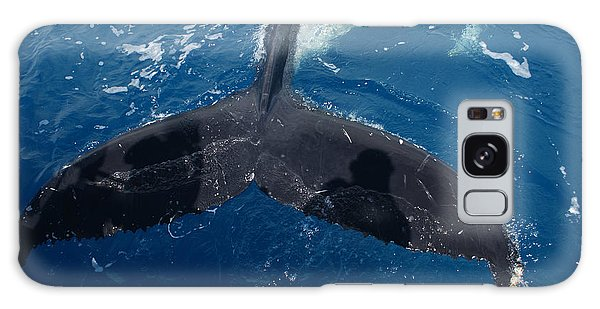 Humpback Whale Tail With Human Shadows Galaxy Case by Gary Crockett