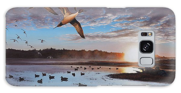 Humphrey Farm Pintails Galaxy Case