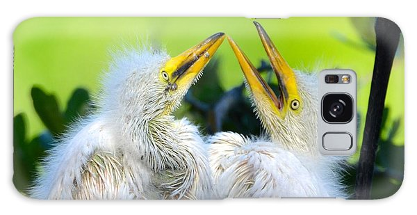 Hungry Egret Chicks Galaxy Case