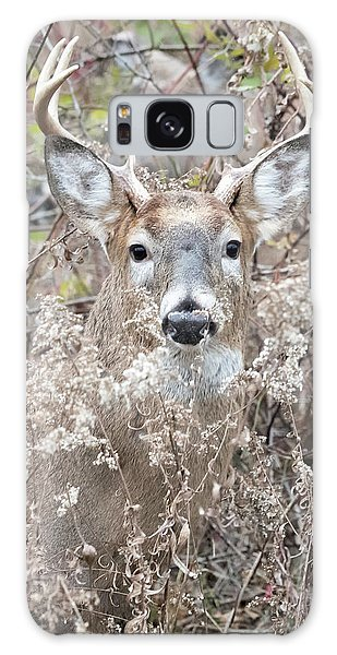 White-tailed Deer Galaxy Case - Hunters Dream by Everet Regal