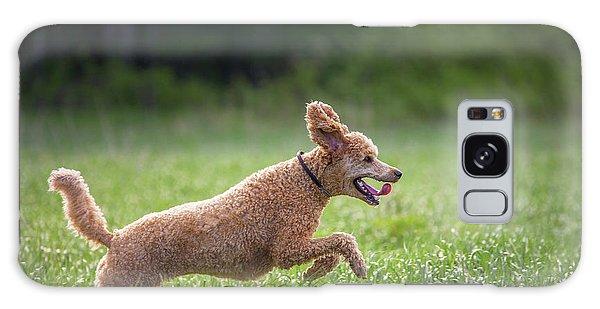 Hunting Dog Galaxy Case