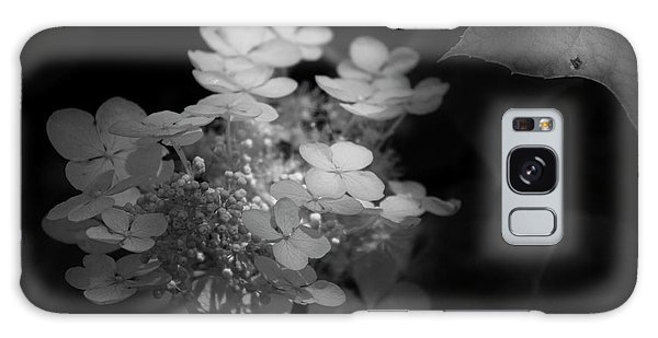 Hydrangea In Black And White Galaxy Case