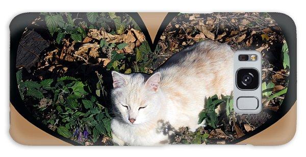 I Chose Love With A Cat Enjoying Catnip In A Garden Galaxy Case