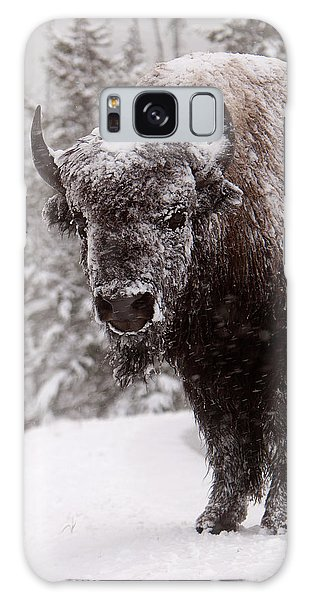 Ice Cold Winter Buffalo Galaxy Case