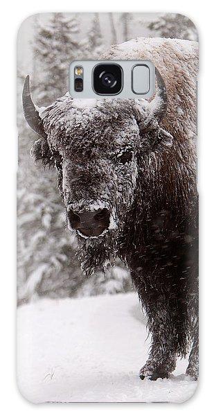 Ice Cold Winter Buffalo Galaxy Case