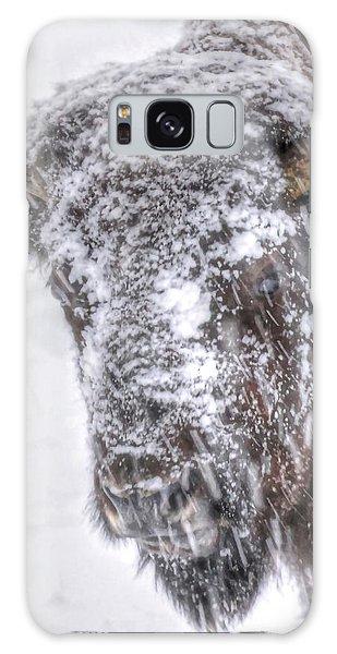 Ice Faced Galaxy Case