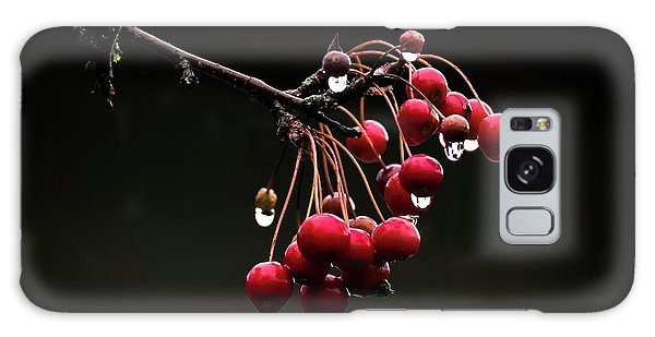 Iced Crab Apples Galaxy Case