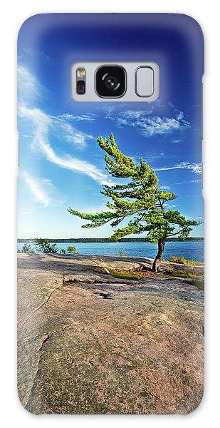 Iconic Windswept Pine Galaxy Case