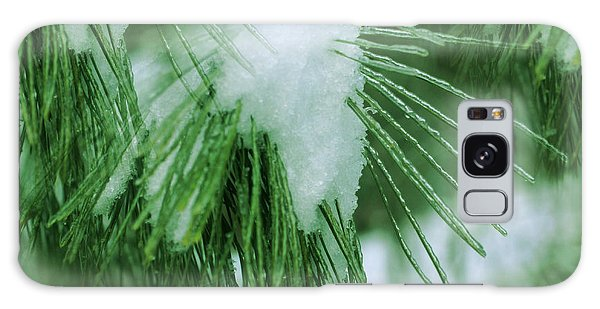 Icy Pine Needles Galaxy Case