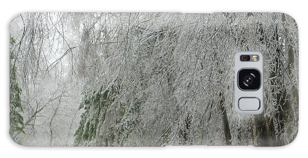 Icy Street Trees Galaxy Case