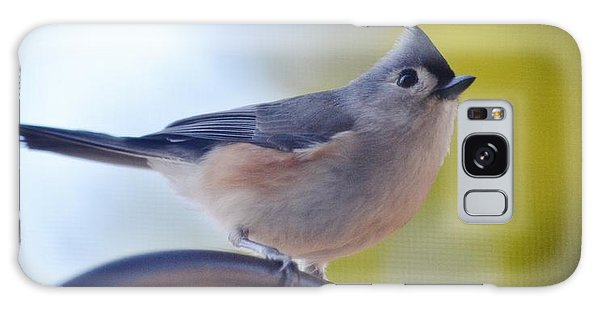 Tufted Titmouse Galaxy Case