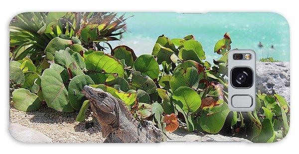 Iguana At Tulum Galaxy Case by Roupen  Baker