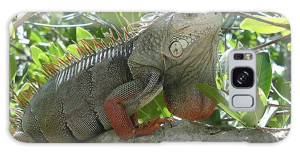 Iguana Daze Galaxy Case by Nancy Taylor