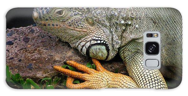 Iguana Galaxy Case