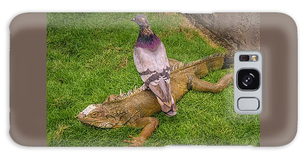 Iguana With Pigeon On Its Back Galaxy Case