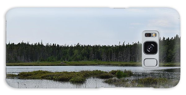 Images From Mt. Desert Island Maine 1 Galaxy Case