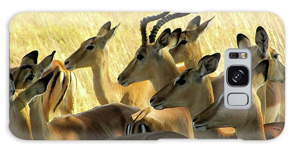Impalas In The Plains Galaxy Case