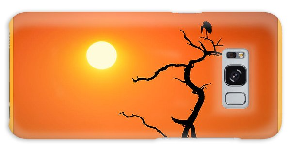 Impalila Island Sunset No. 2 Galaxy Case by Joe Bonita