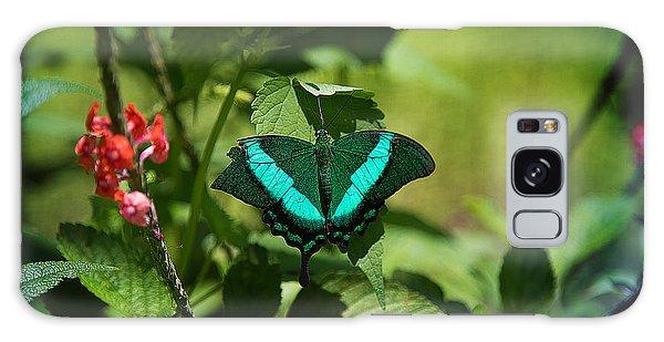 In A Butterfly World Galaxy Case