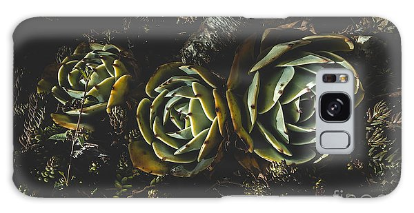 Desert Flora Galaxy Case - In Dark Bloom by Jorgo Photography - Wall Art Gallery