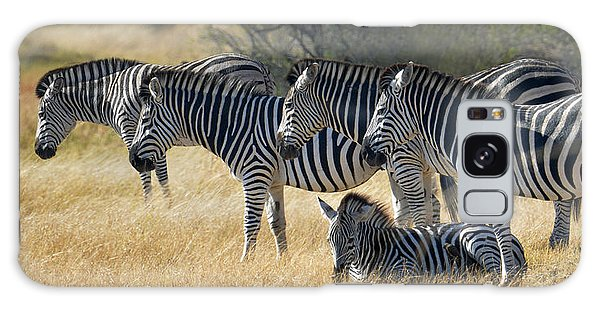 In Line Zebras Galaxy Case by Joe Bonita