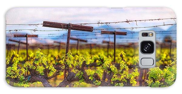 In The Vineyard Galaxy Case