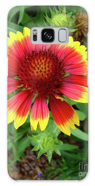 Indian Blanket Flower Galaxy Case