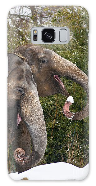 Indian Elephants Eating Snow Galaxy Case