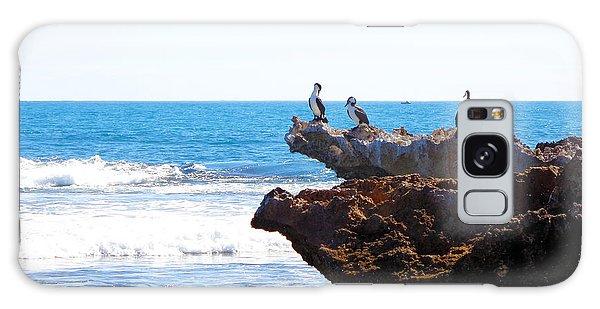 Indian Ocean Birds Resting On Rocks Galaxy Case