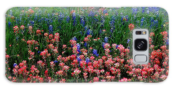 Indian Paintbrush #0486 Galaxy Case by Barbara Tristan