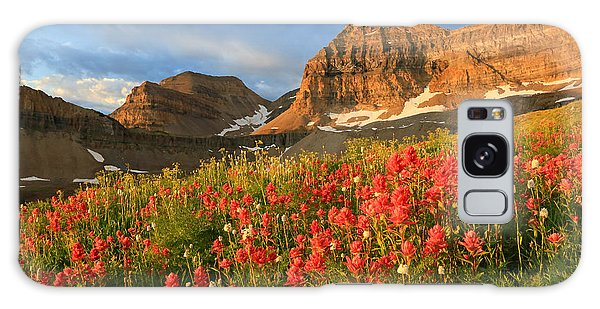 Indian Paintbrush On Timpanogos. Galaxy Case